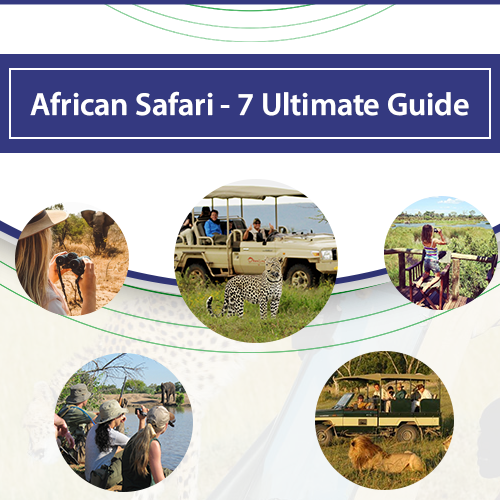 AFRICAN SAFARI - 7 ULTIMATE GUIDE