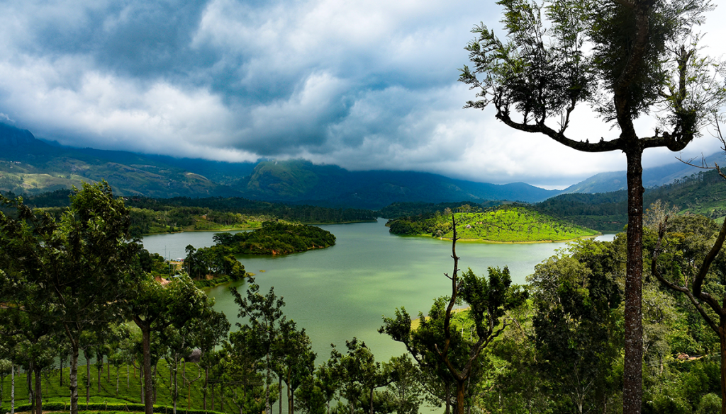 Munnar Explore-The-Best-Monsoon-Destinations-In-India